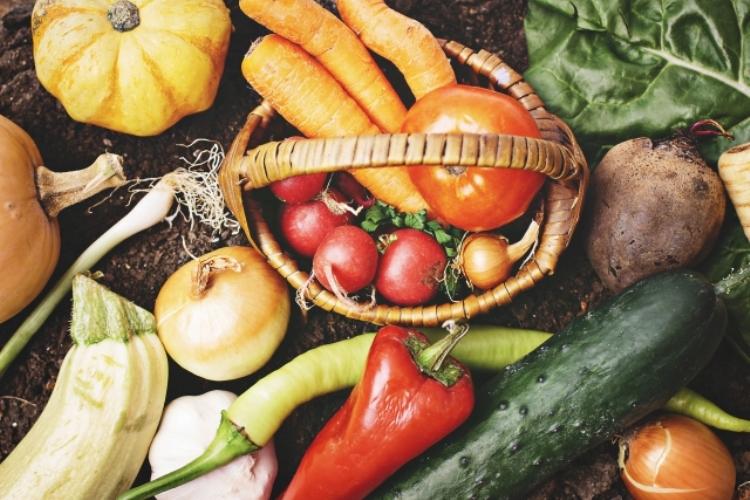 ストレス発散に効果のある食べ物